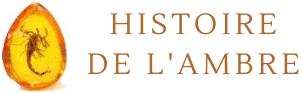 Boutique Histoire de l'ambre